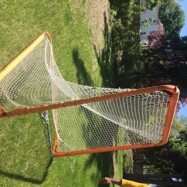 Photo of Lacrosse Goal Net