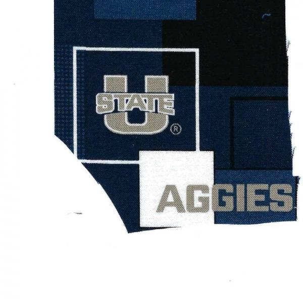 Photo of U. of Utah fabric