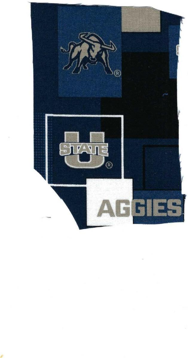 Photo 1 of U. of Utah fabric