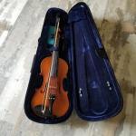 Viola with case
