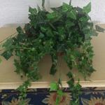 Silk Plant Ivy Arrangement