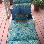 Chaise Lounge Cushion, 2 Blue Pillows, and Matching String Lights