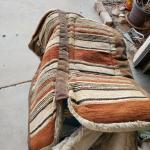 2 padded horse blankets