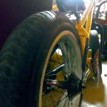 Love freedom custom twenty inch fat bike by Jaguar