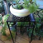 ~~~Metal Plant Stand~~~