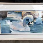 Original Water color of beautiful Swan