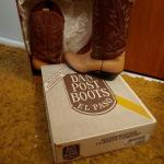 2-Tone Tan/brown Western Boots