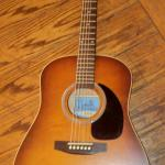 Seagull Model 29822 Entourage Rustic Guitar