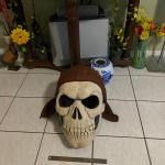 Skeleton Mask, Halloween Costumes, Boy Clothes, Scooter, Toys