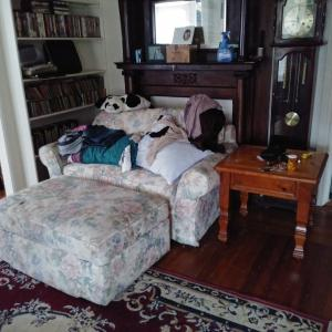Photo of Loveseat/bed