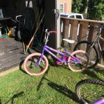 Girls Purple Bicycle