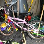 Girls Mongoose Bike BMX