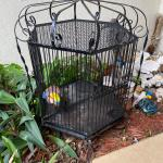 "Bird Cage, Realistic Speakers, Bocce Set,  Paddle Oar, 43"" TV"