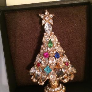 Photo of Christmas pin