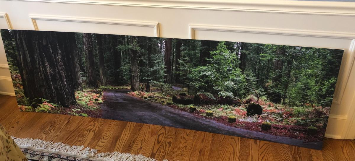 Photo 4 of Large wall hanging - scenic / art/  picture