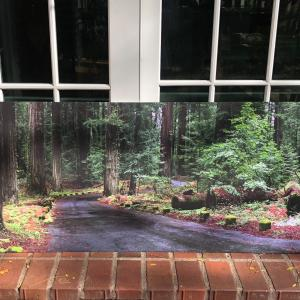 Photo of Large wall hanging - scenic / art/  picture
