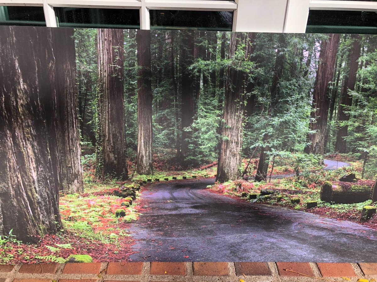 Photo 6 of Large wall hanging - scenic / art/  picture