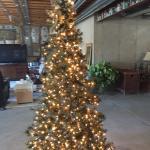 6ft pre lit tree