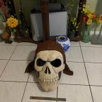 Halloween Costumes, Bocce Set, Koho Hockey Stick, Razor, Paddle