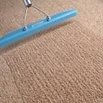 PROFESSIONAL CARPET CLEANING NOT WAITING ON THE CARPET TO BE DRY