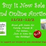 Charity Buy It Now & Auction Online Event