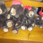 "4 ""Teelix Bears Family""."