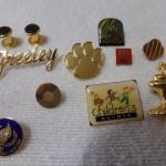 LOT 319  VARIETY OF PINS AND COLLECTIBLE POLICE COIN