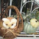 Thanksgiving Owl Basket and Fall Decor