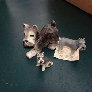 Photo of #24 Miniature Schnauzer Dog Lot