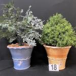 LOT#18: Pair of Classico Vase/Planter Lot with Faux Plants