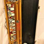 Bulbul Tarang Indian Banjo