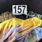 LOT#157: Ladies Scarves Lot