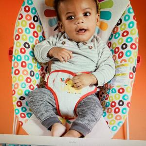 Photo of Fisher Price geo meadows baby bouncer.