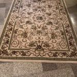 Scroll/Floral Area Rug with Neutral Background
