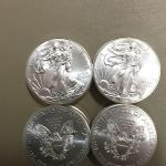 Item (2)  2014 Silver Eagles