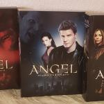 Angel TV series: Seasons 1, 2 & 3