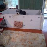 Hand Crafted Whelping Kennel Built to Easily Breakdown and Move (Dog not Include