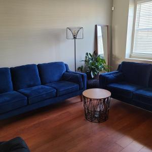 """Photo of """"New"""" sofa  and loveseat"""