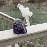 Carved stone bird on amethyst base