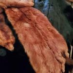 Lot 53: 4 Minks/Furs/Stole