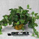 Faux Ivy Plant in Brass Container