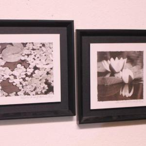 Photo of Lot 80 Pair of B&W Lily Prints