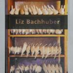 Untitled photo book by Liz Bachhuber