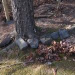 FREE Landscape Rocks & Cinder Blocks.