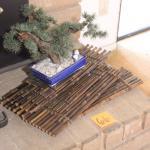 Lot 66 Faux Bonsai and Bamboo Sheets