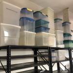 Lot 287 - Storage Bins with Lids