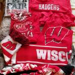 Badger gear