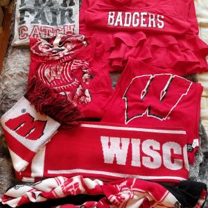 Photo of Badger gear