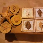 Sea  Wall Decor (Resin)