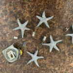 Starfish charm, with clip